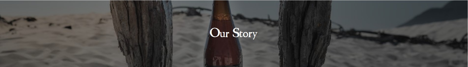 Our story header image